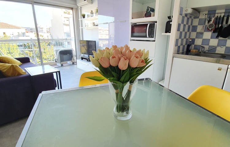 Apartment In Nizza rentals apartments for students and home sea